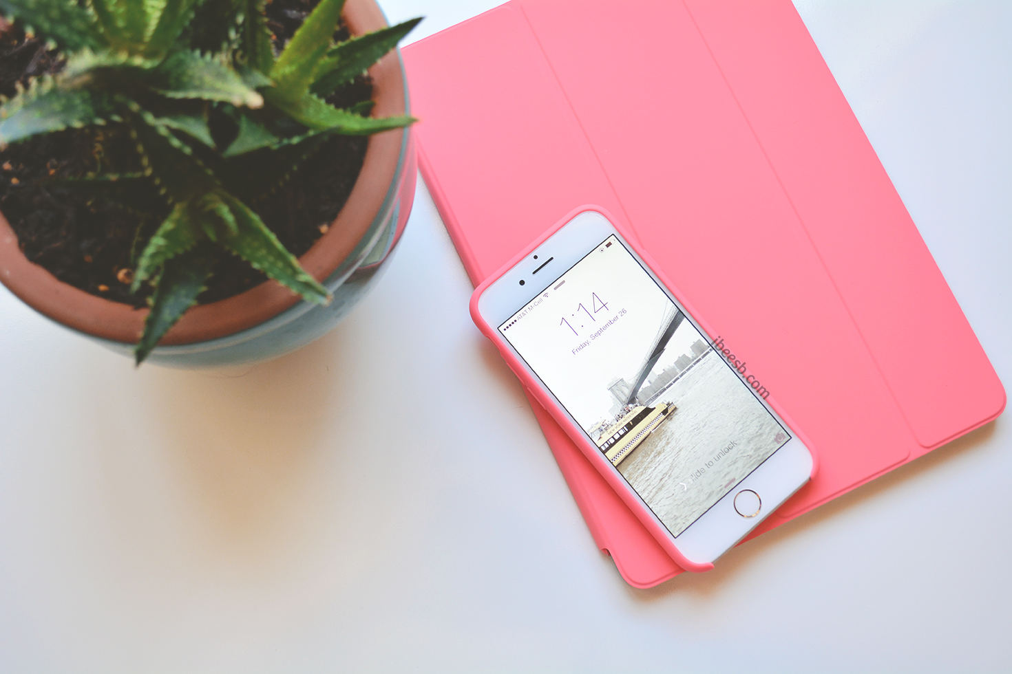 5 Essential Apps every Boss Lady should have!